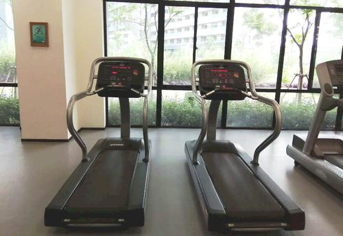 Treadmills in the gym with a view