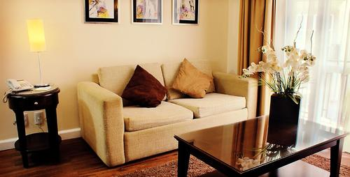 Comfortable sofa with soft pillows and coffee table with flowers