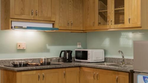 Fully equipped kitchen with a stove, hood and microwave