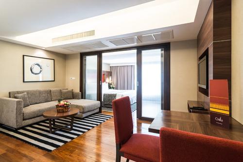 Large furnished living room